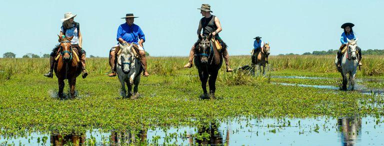Nadar a caballo: un ritual exótico para descubrir el Iberá