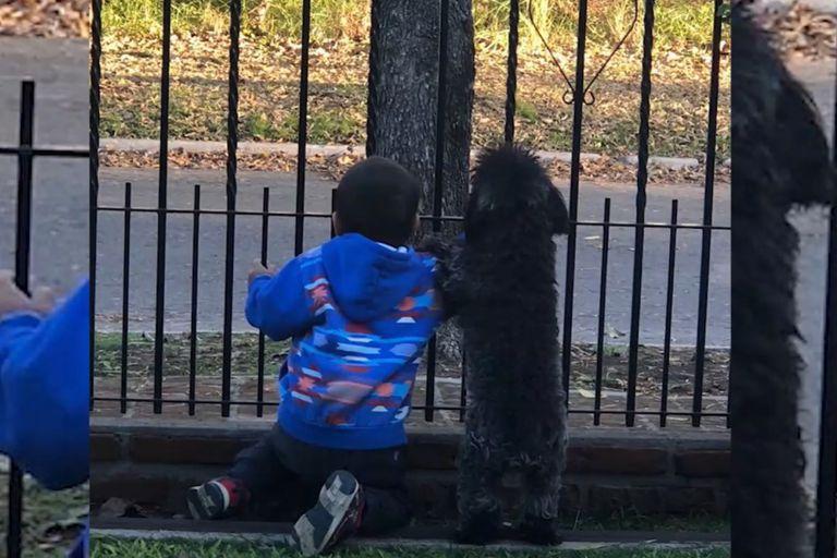 Santino, en los primeros días de su estadía en la casa de sus abuelos, esperaba junto a la reja que sus padres lo fueran a buscar