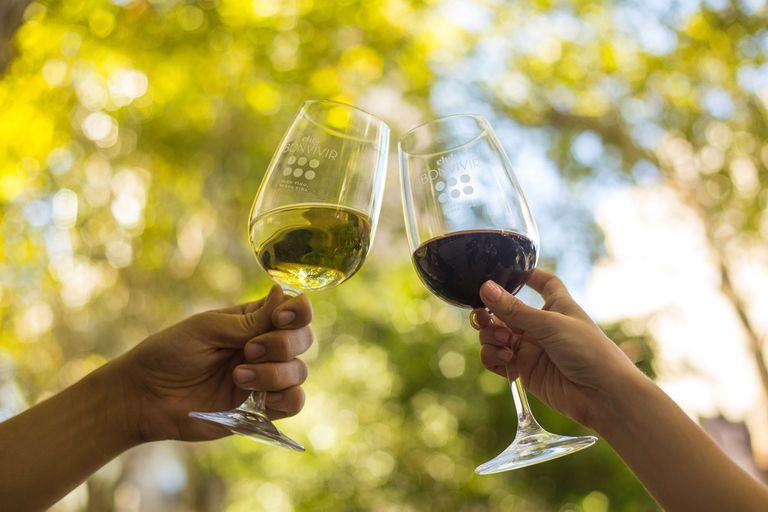 Club Bonvivir festeja nueve años ininterrumpidos compartiendo los mejores vinos argentinos y los enólogos más importante del país cuentan el secreto de este éxito.