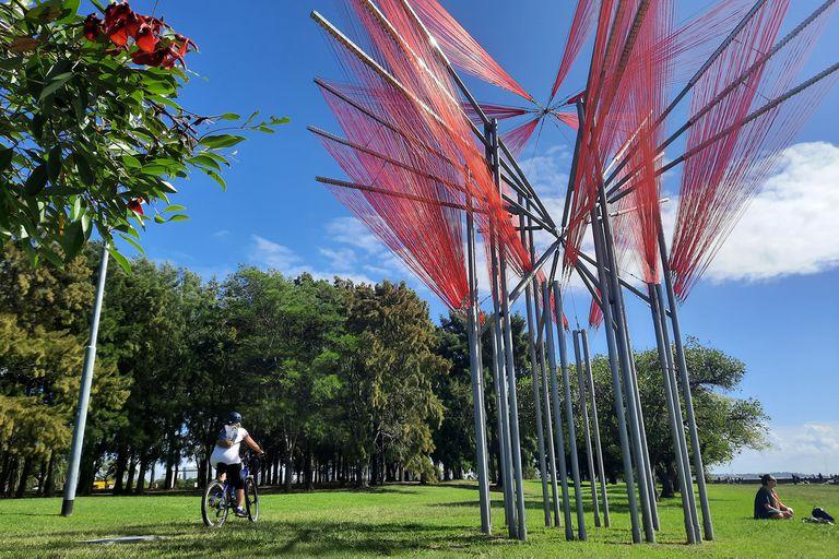 """Propato toma la simbología de la flor nacional, que recrea con 15 kilómetros de tansa; """"Rojo flor"""" es una obra de sitio específico instalada en el Parque de los Niños, en Núñez"""