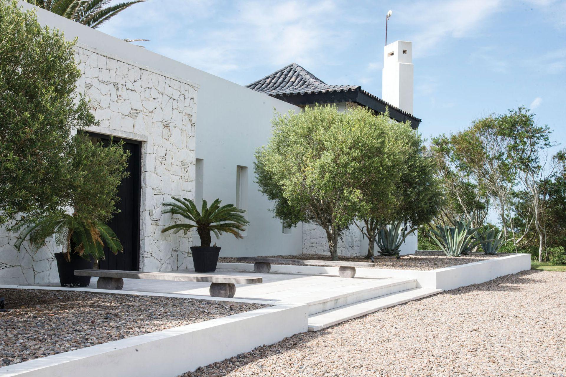 El acceso principal a la casa se refuerza con cuatro simétricos olivos y dos macetones.