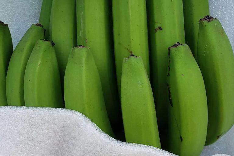 El consumo per cápita anual de banana en la Argentina es de 12,2 kilos, mientras que en el mundo es de 8,5
