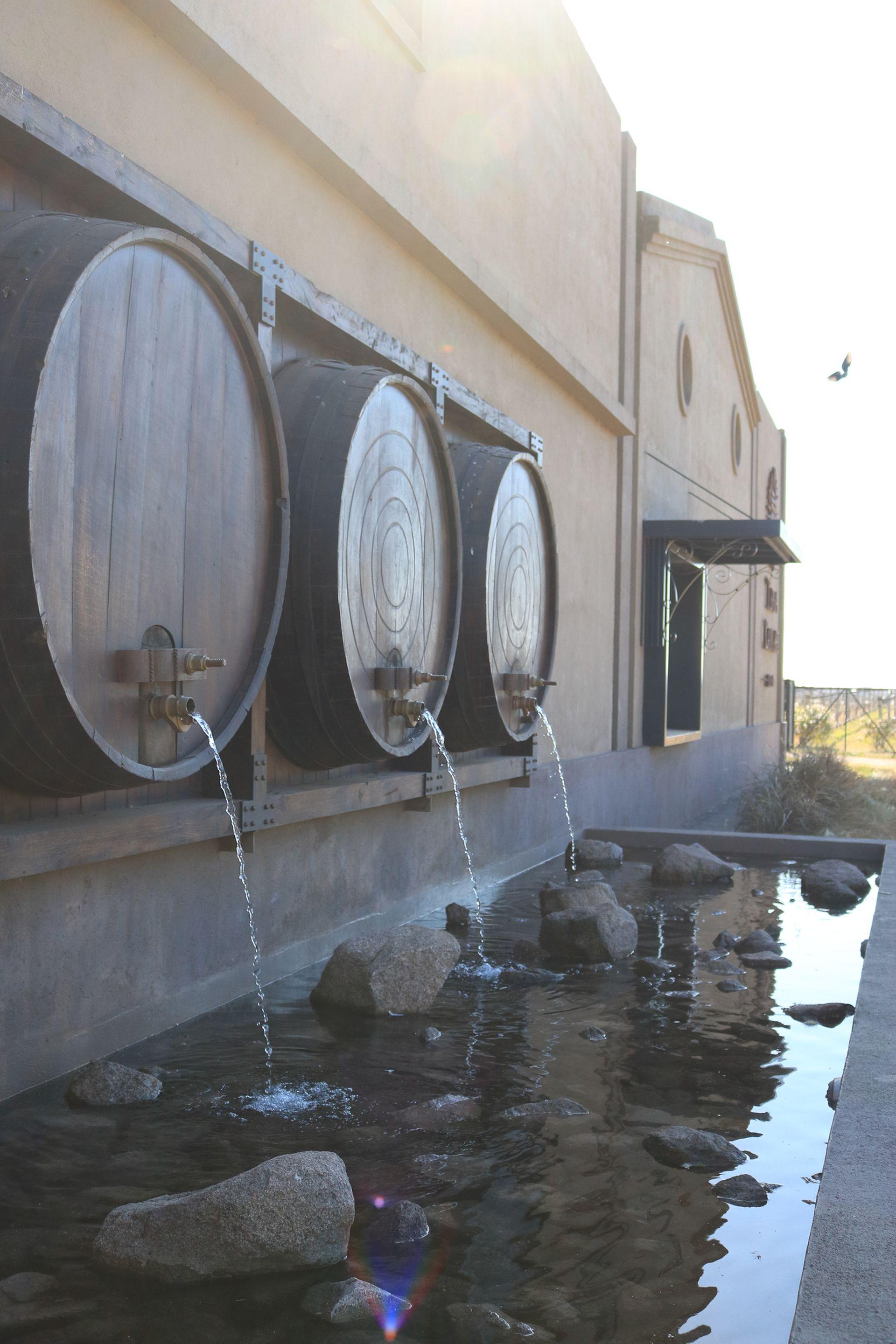 La Bodega Terra Camiare elabora el vino Indama Rosado de Isabella, estrella de la zona