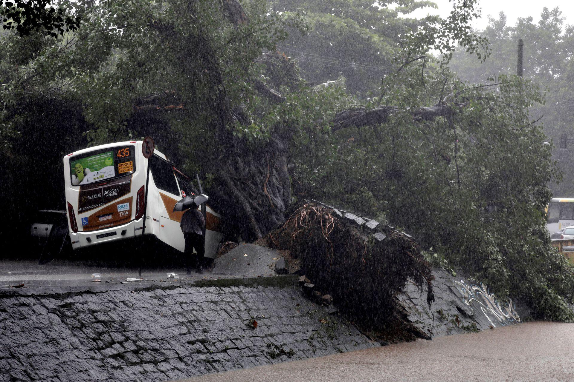 Un autobús se ve debajo de los árboles arrancados por las fuertes lluvias en el barrio de Leblon en Río de Janeiro