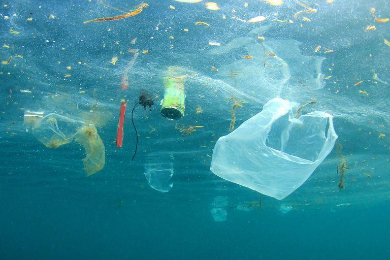 La contaminación por plástico afecta el agua y toda la fauna marina