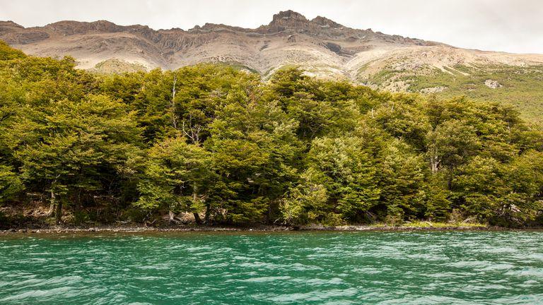 Lago del Desierto, paradoja patagónica