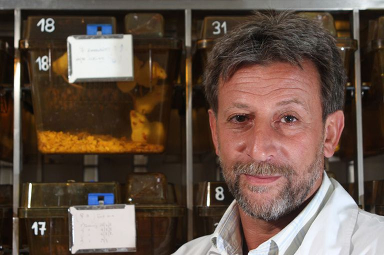 Hugo Luján, director del Centro de Investigación y Desarrollo en Imunología y Enfermedades Infecciosas del Conicet