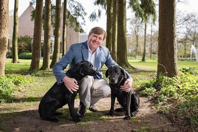 El rey Guillermo de Holanda posó junto a sus perros en su retrato oficial para su cumpleaños 51