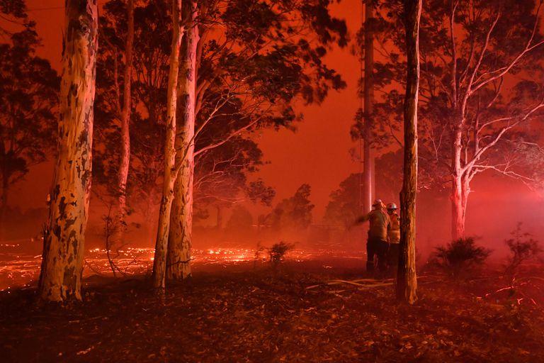 Miles de bomberos luchan contra las llamas