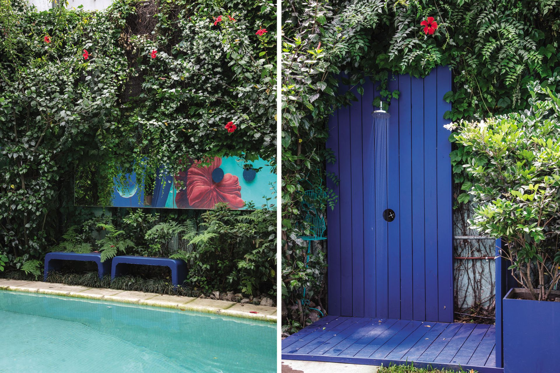 A la izquierda, ampelopsis y jazmines de leche cubren una de las medianeras. A la derecha: la ducha de madera pintada con esmalte sintético azul repite el color y cierra el espacio.