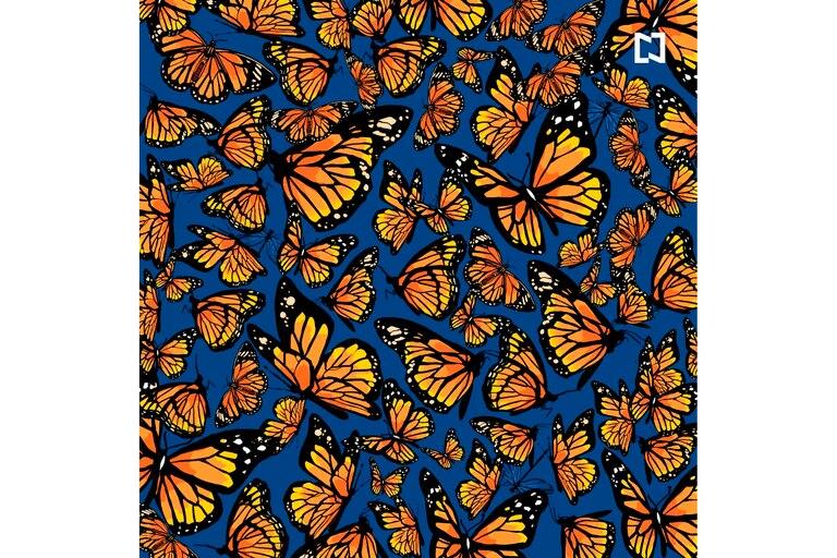 Para poder encontrar las tres libélulas deberás concentrarte en los más mínimos detalles.