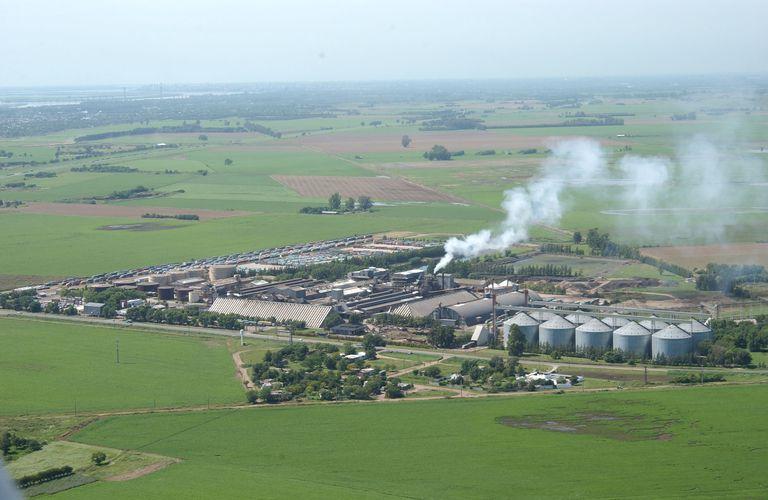 Tras un año cerrada: Vicentin reabrió una planta de molienda de girasol