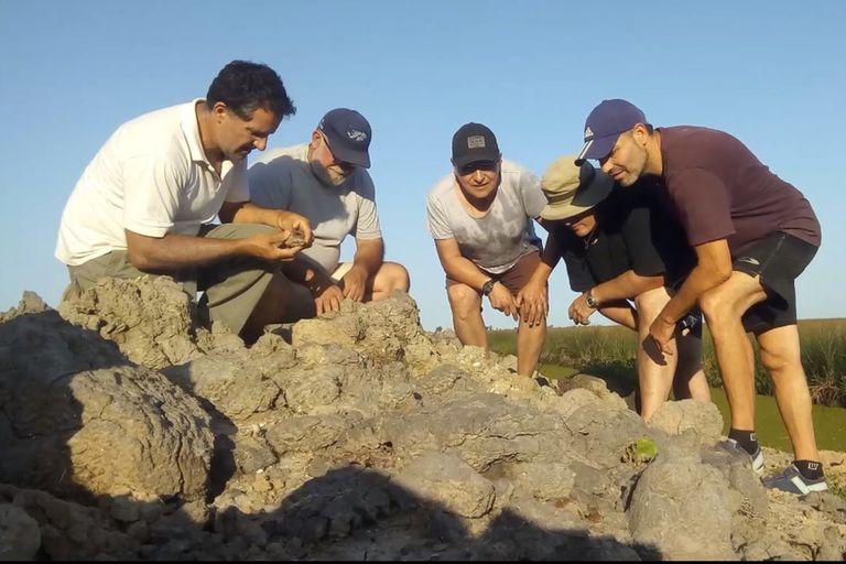 El hallazgo se produjo en Campo Spósito, en la zona conocida como Bajo del Tala, a 180 kilómetros de Buenos Aires, mientras se realizaban excavaciones de tareas rurales