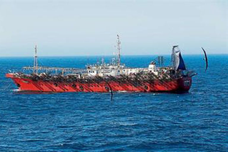 En los últimos tres años aumentaron las exportaciones pesqueras