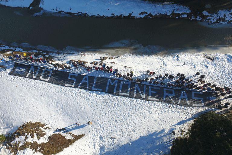 La campaña para evitar que se instalen salmoneras en Tierra del Fuego