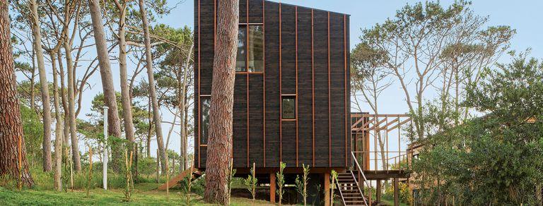 En José Ignacio. Una cabaña ultramoderna en medio del bosque y muy cerca del mar