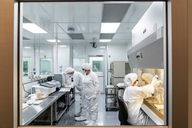 Científicos trabajan en una investigación y desarrollo de Pfizer en marzo en Chesterfield, Missouri, Estados Unidos