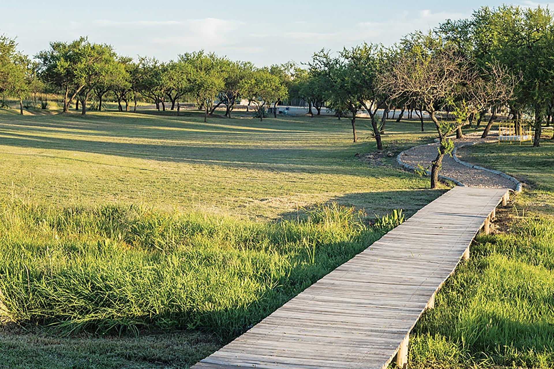 Un camino de madera se despliega para disfrutar del campo.