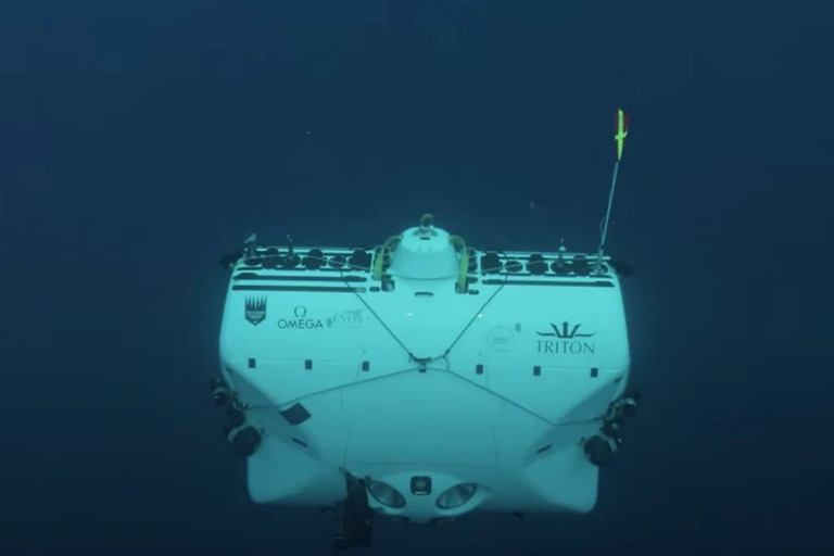 Ciencia: descienden hasta las profundidades del mar y se llevan una sorpresa
