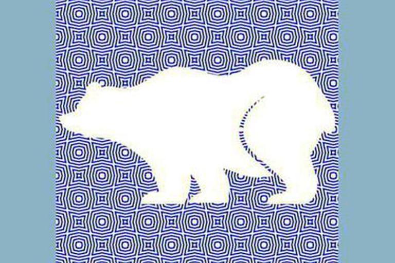 ¡Sí, es un oso! ¿Lo habías descubierto?