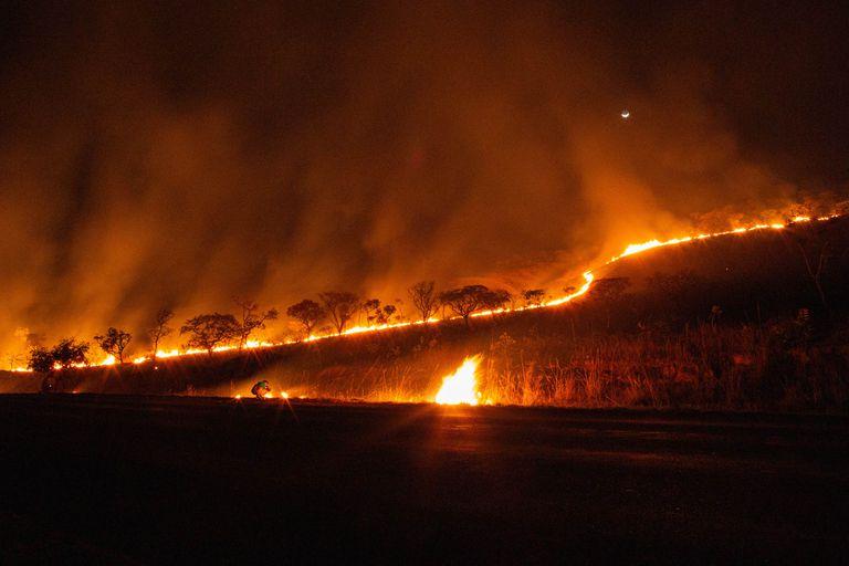 El pantanal de Brasil, el mayor humedal del planeta, afectado por los incendios el mes pasado