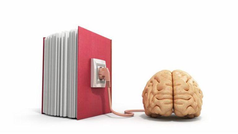 Al leer la acciones de un personaje de ficción, en el cerebro se activan las zonas motoras como si uno realizara esa actividad