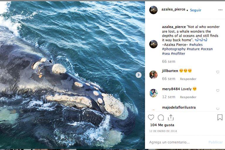 La foto que subió al Instagram que abrió con un pseudónimo, tomada durante su visita a Puerto Madryn