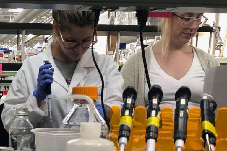Argentinos están desarrollando un kit para detección rápida del coronavirus