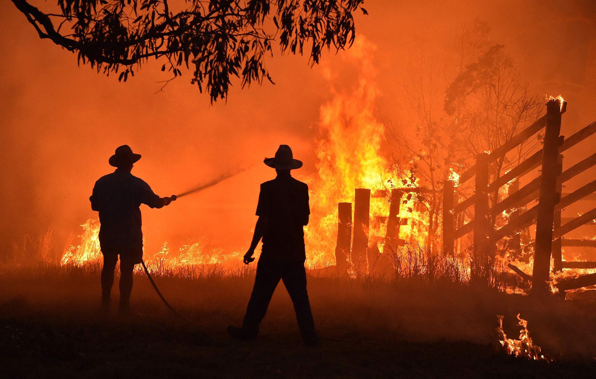 Los incendios son cada vez más incontrolables, incluso en zonas donde no es frecuente que sucedan como Sidney (Australia), California (EE.UU.) o la Amazonia el fuego causó estragos en los últimos años