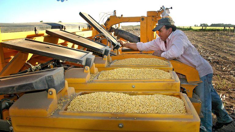 La principal empresa local de semillas de soja lamentó la decisión de una multinacional