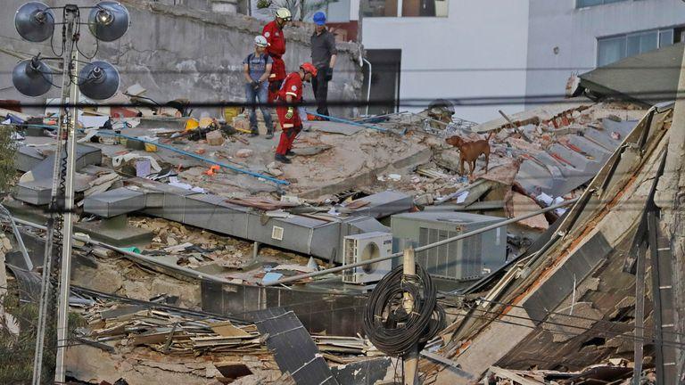 Terremoto en México: un fuerte sismo de 7,1° en la escala Richter estremeció al país y dejó
