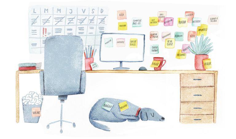 Organizarse, la obsesión cotidiana