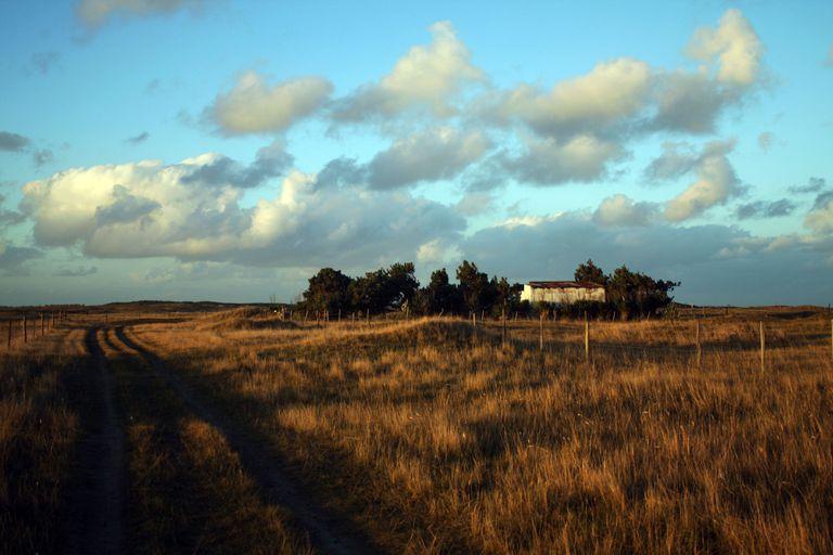 """Los campos de El Remanso en Mar del Sud. En esa zona se construyó la """"casa de los alemanes"""" donde fue hallada la lápida oculta de un miembro del partido nazi argentino"""