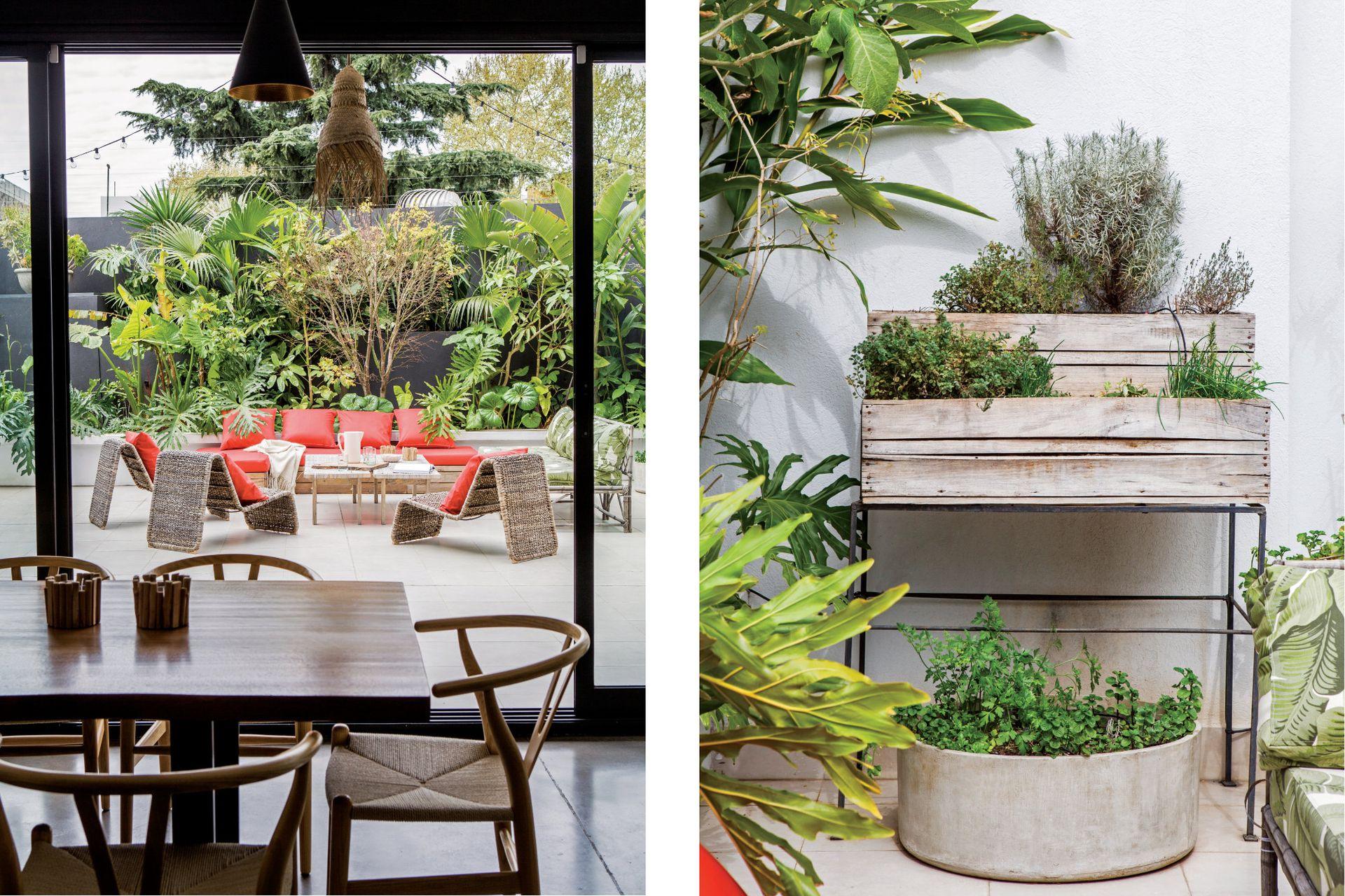 Grandes canteros escalonados alojan arbustos, plantas tropicales y árboles frutales en este jardín secreto en medio de la gran ciudad.