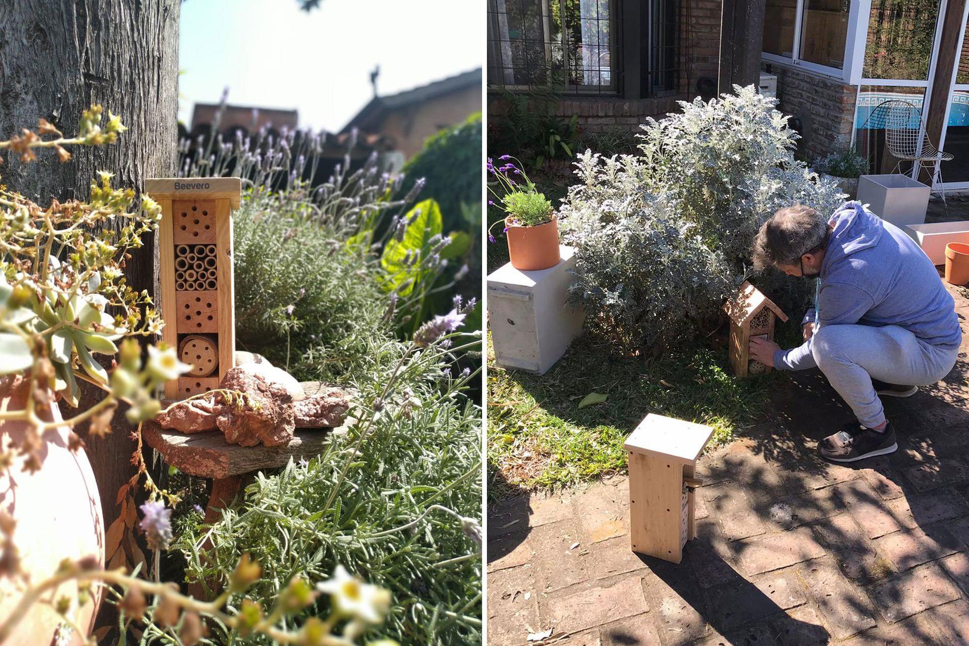 Refugios para abejas solitarias y plantas para atraer insectos polinizadores, los productos protagonistas del emprendimiento.
