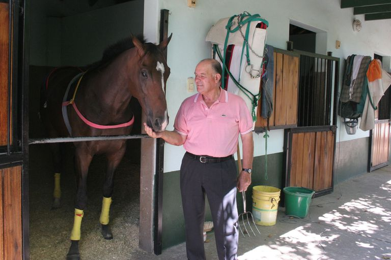 Volver a vivir: el caballo que ganó dos Pellegrini seguidos y pasó 10 años preso