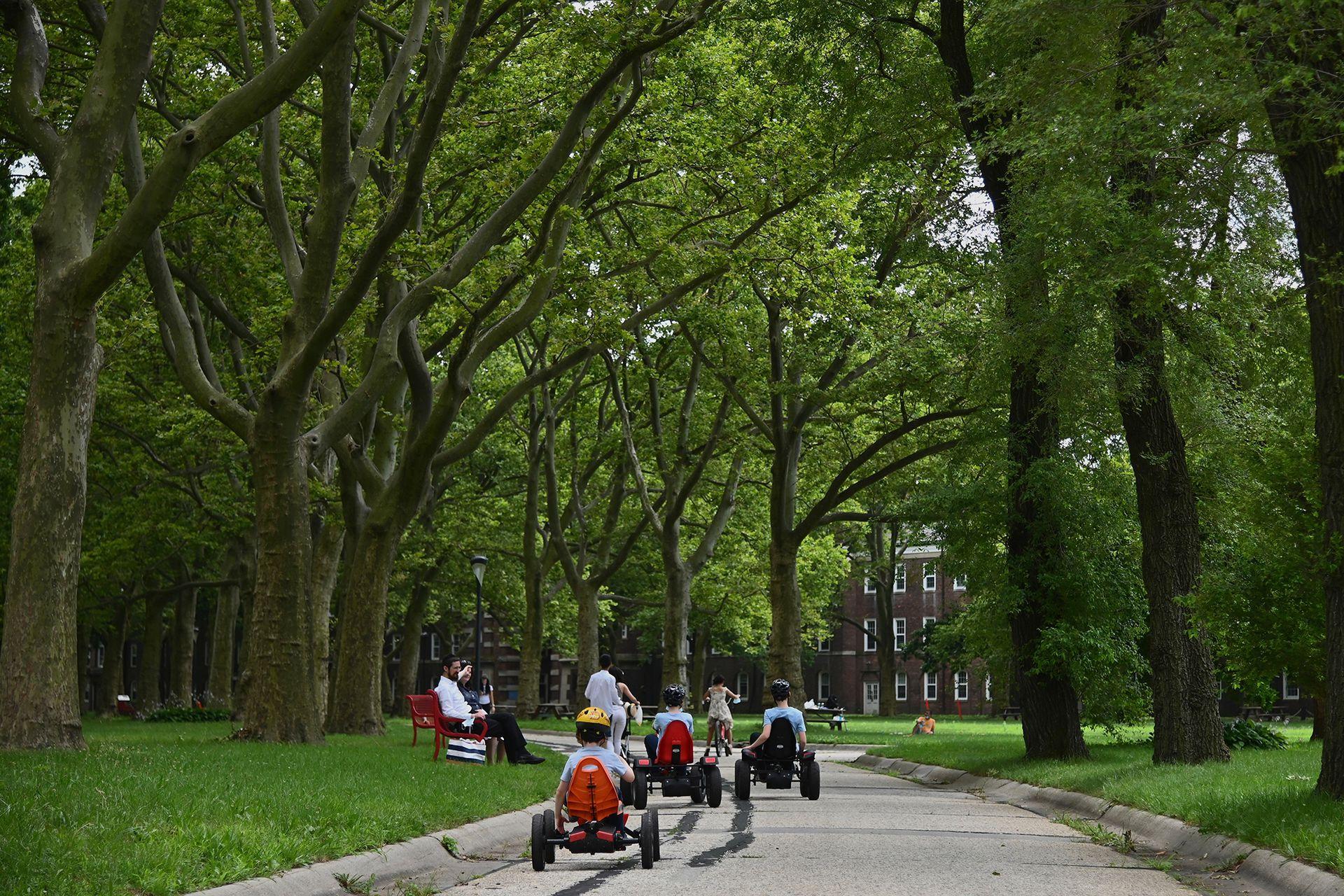 Los niños juegan en sus carros, en Roosevelt Island