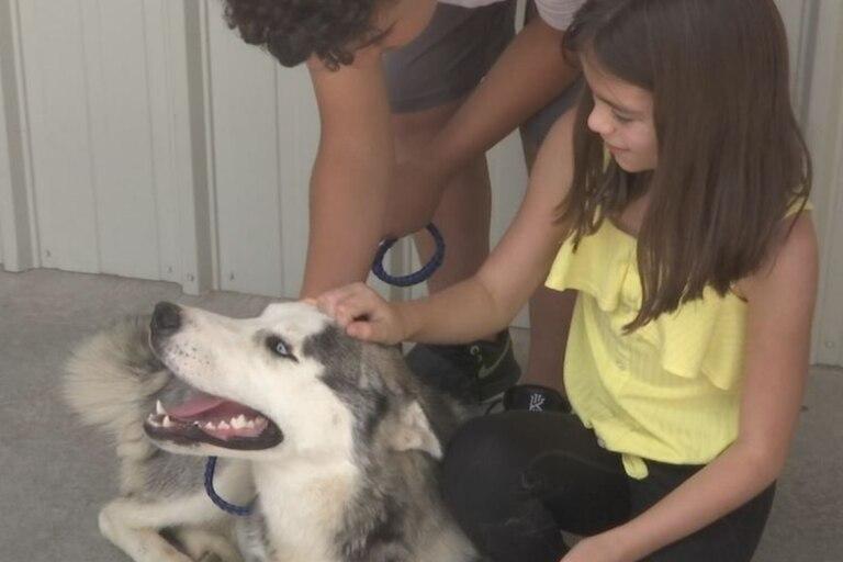 El perro fue adoptado por una nueva familia