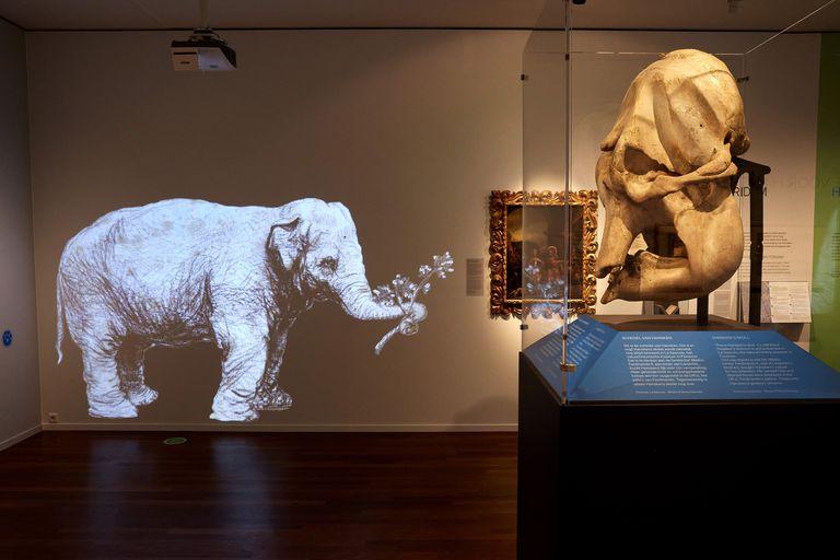 La fascinante y trágica historia de Hansken, la elefanta que inmortalizó Rembrandt