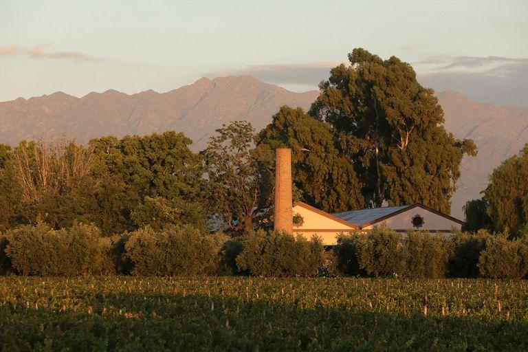 Un paisaje de ensueño de Bodegas Lagarde en Mendoza.