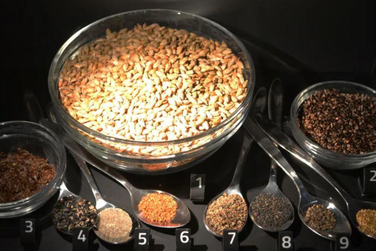 Cebada (1), persicaria pálida (2), lino (3), alforfón silvestre (4), arena (5), sésamo bastardo (6), cenizo (7), esparcilla (8), cáñamo bastardo (9) y pensamiento silvestre (10) fueron los ingredientes encontrados en la preparación