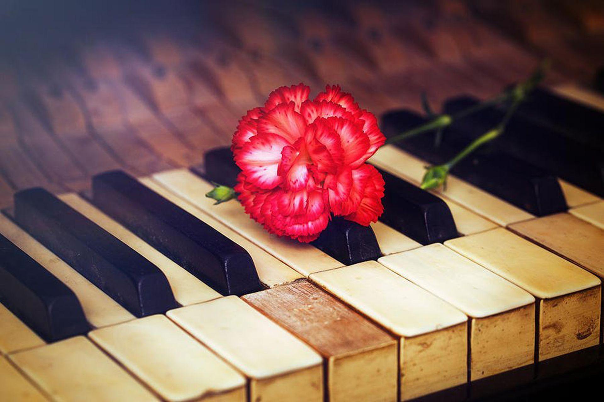 La flor roja sobre el piano, cada vez que a Don Osvaldo no lo dejaba tocar por sus ideas políticas