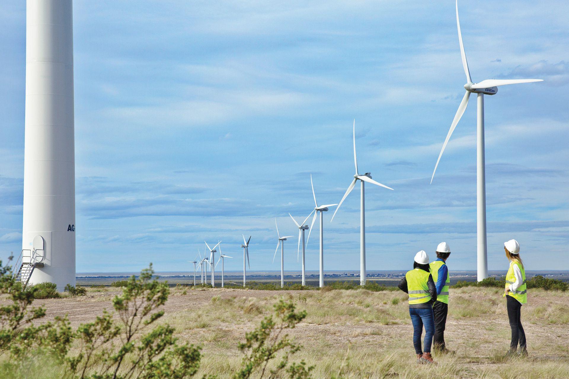 Los campos de energía eólica, como el de Trelew, son un nuevo paradigma