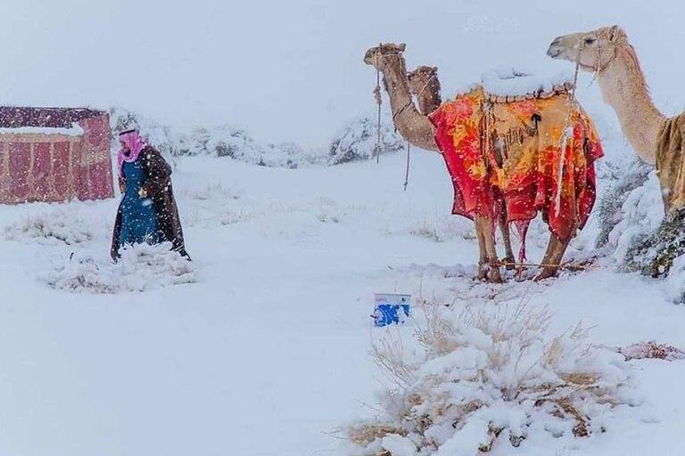 En la región de Arabia Saudita del desierto de Asir la temperatura llegó a los 2° bajo cero