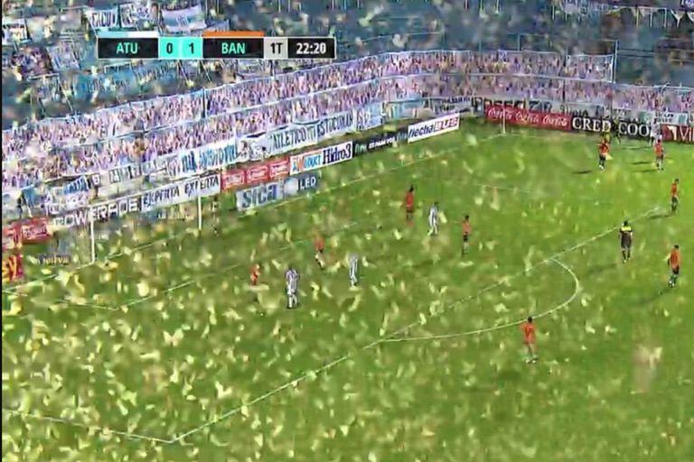 Impactante. Invasión de insectos en Tucumán: fútbol y una ola de memes
