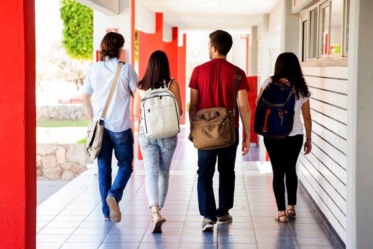 Las políticas públicas son insuficientes para incluir a los jóvenes