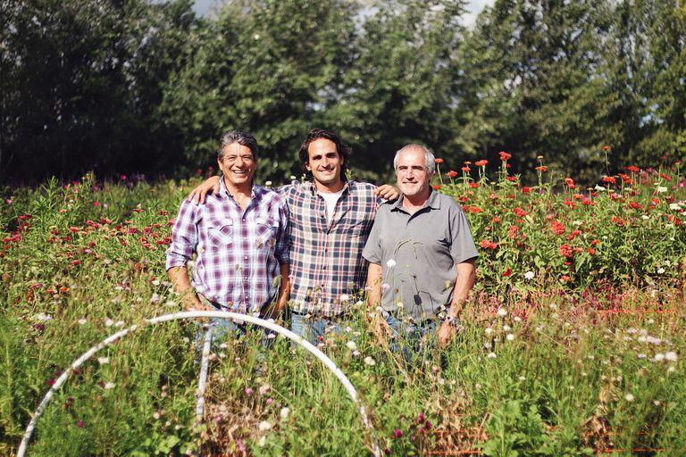 Son amigos y transformaron una antigua granja en un gran cultivo de flores
