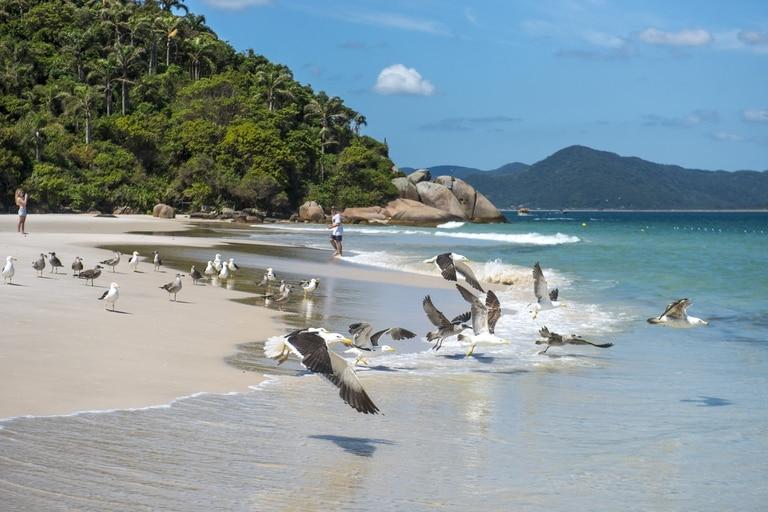 Brasil, uno de los destinos preferidos de los argentinos para el verano