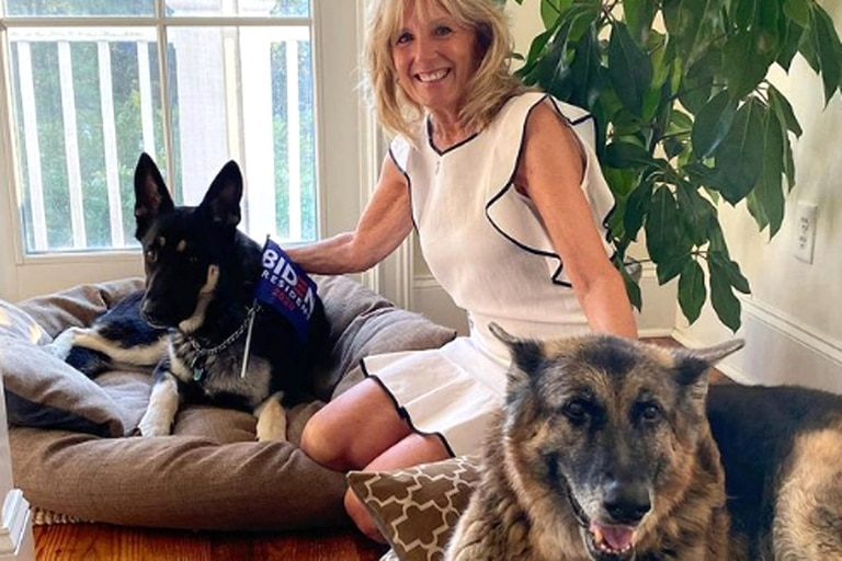 Jill Biden, la mujer del presidente norteamericano, con sus dos perros: Champ y Major