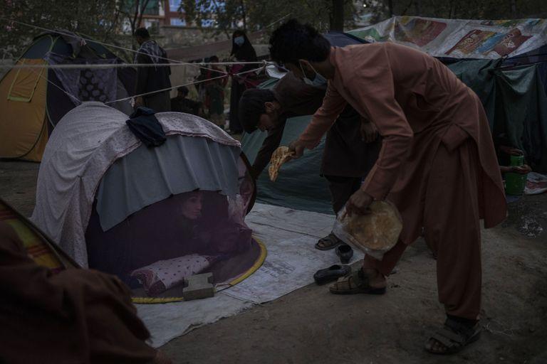Afganos desplazados distribuyen comida donada entre otros desplazados en un campamento en Kabul, Afganistán